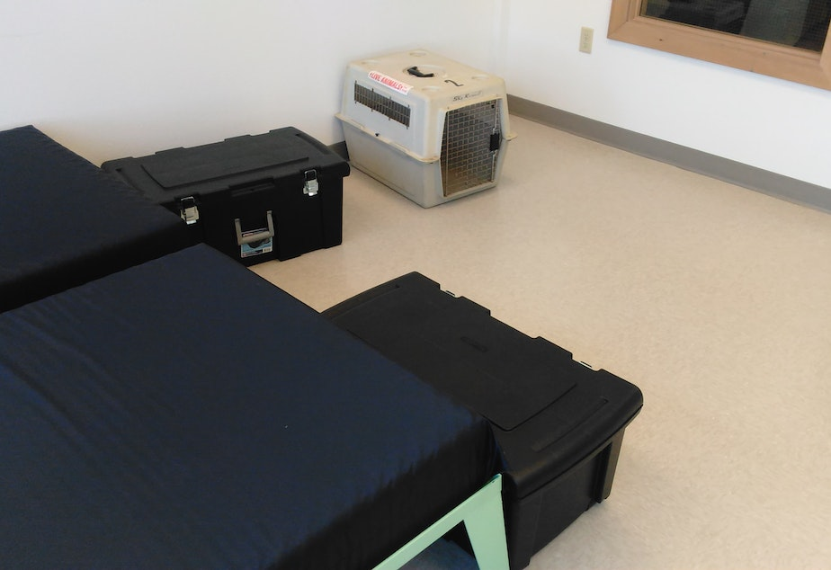 The new 24 hour homeless shelter accommodates people with pets, partners, belongings and addiction issues