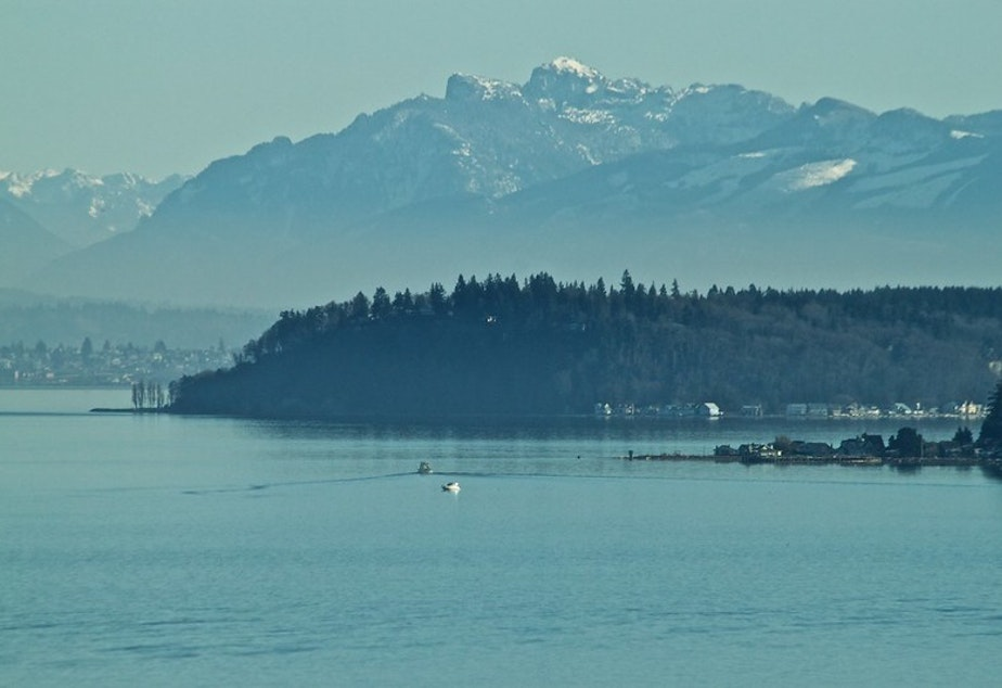 caption: The town of Langley and the cascades as viewed from the water