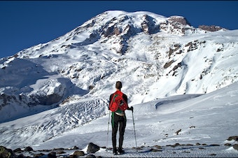A cell phone tower at Paradise could bring coverage to much-visited parts of Mount Rainier National Park.