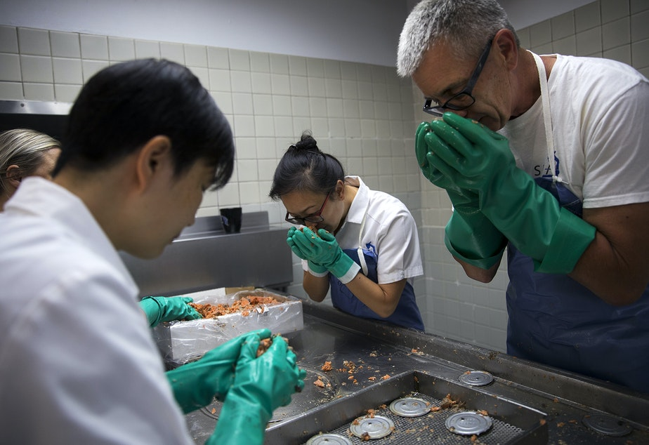 Ann He, left, Virginia Ng, center, and Bruce Odegaard, right, perform sensory examinations of canned salmon on Tuesday, August 6, 2019, at the Seafood Products Association on South Jackson Street in Seattle.