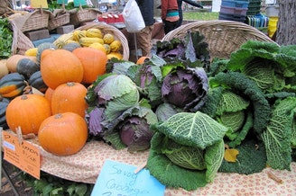 <p>An array of fresh vegetables is displayed on a table at a farmer's market.</p>