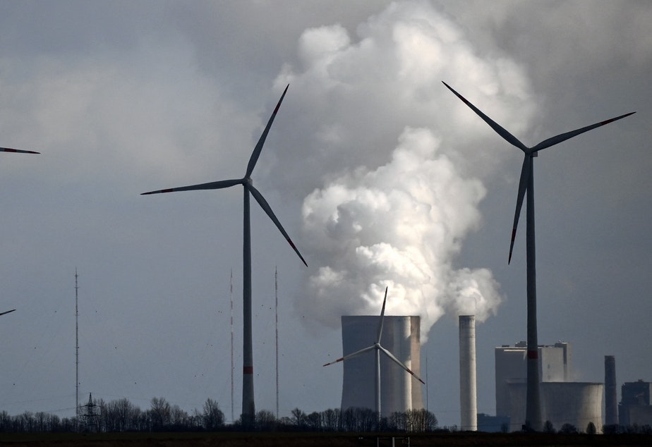 caption: A new study finds that common climate change terms can be confusing to the public. That includes phrases that describe the transition from fossil fuels to cleaner sources of energy. Here, wind turbines operate near a coal-fired power plant in Germany.