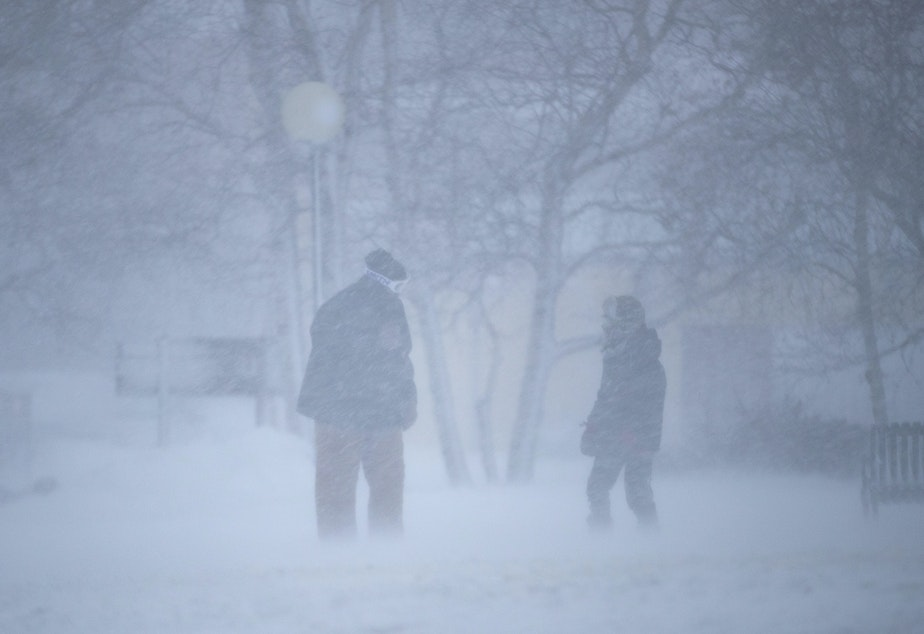 caption: Two people braving blizzard conditions in Duluth, Minn., on Saturday.
