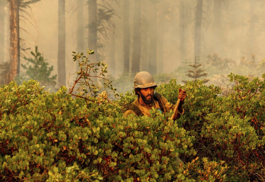 caption: Firefighter Cody Carter battles the North Complex Fire in Plumas National Forest, Calif., on Monday.