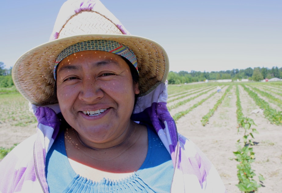 Nelida Martinez, one of the farmers growing their businesses at Viva Farms, a farm incubator project in the Skagit Valley