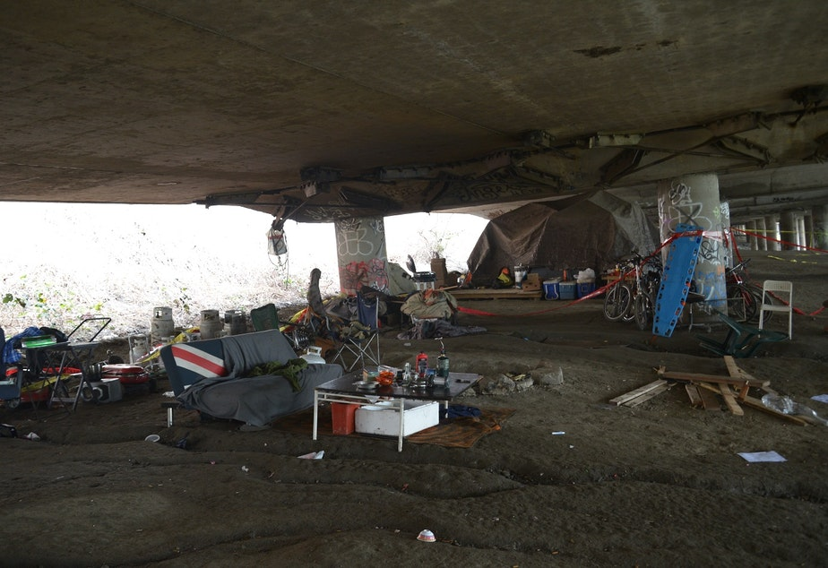 Officially the East Duwamish Greenbelt, everyone calls this homeless encampment the Jungle.