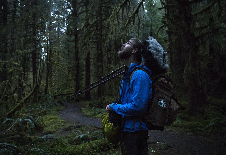 caption: Matt Mikkelsen carries his audio equipment while walking toward One Square Inch of Silence as the sun comes up on Friday, April 5, 2019, in the Hoh Rainforest in the Olympic National Park.