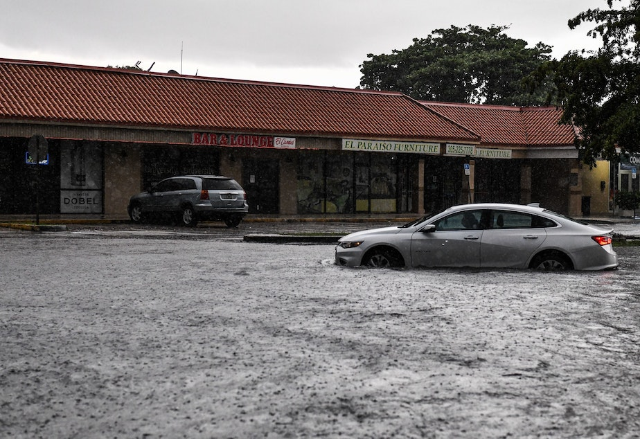 caption: A woman drives through floodwater during heavy rainfall in Miami. A new study predicts that high tide flooding in coastal areas could increase in frequency because of climate change and the lunar cycle in the mid-2030s.