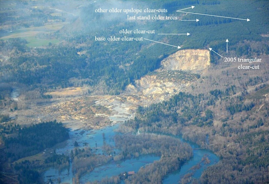 caption: WSDOT photo of Oso slide area annotated by retired fisheries biologist Bill McMillan of Concrete, Wash.