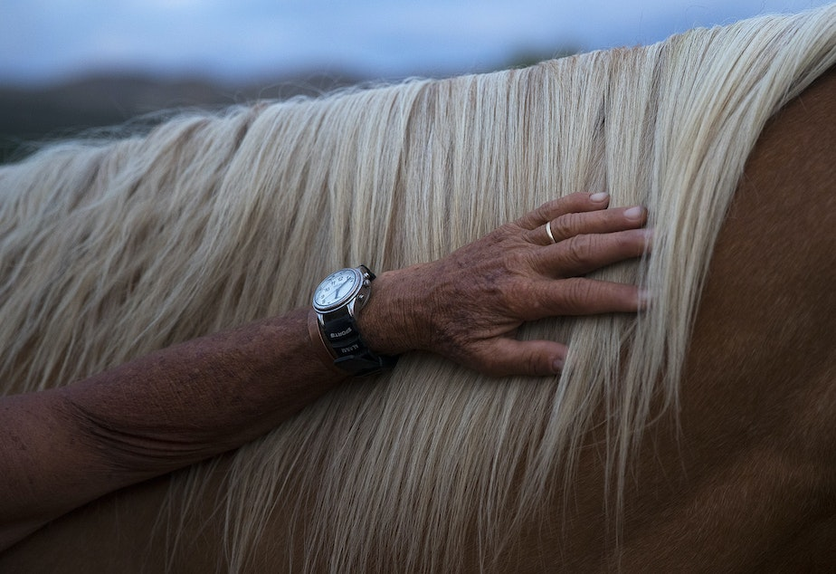 "caption: Julie Hensley pets the mane of her horse, Hot Rod, on Tuesday, July 16, 2019, at her home in Brewster. ""I think because the horse sees, it makes me feel like I'm not blind,"" Hensley said. ""It makes me feel a real freedom."""