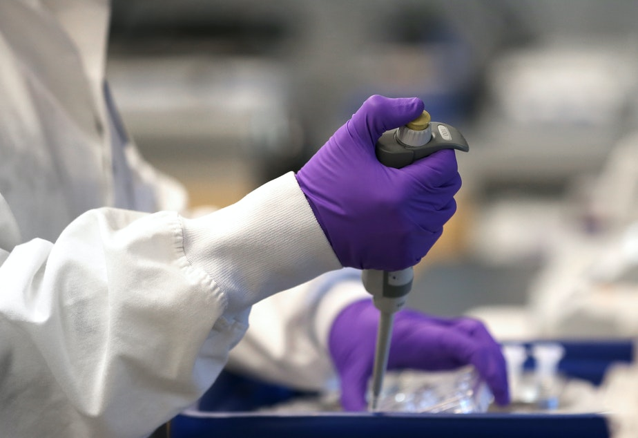 caption: A scientist works in a lab at Moderna in Cambridge, Mass., in February. Moderna has developed an experimental coronavirus medicine, but an approved treatment could be more than a year away.