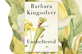 Barbara Kingsolver's new novel, Unsheltered