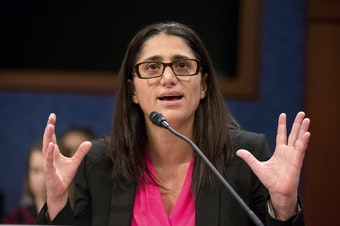 FILE - In this Feb. 10, 2016 file photo, Dr. Mona Hanna-Attisha speaks on Capitol Hill in Washington during a House Democratic Steering and Policy Committee hearing on The Flint Water Crisis.