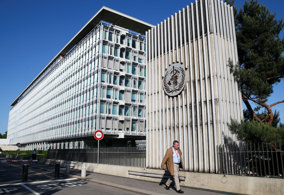 caption: President Trump says the WHO has been too quick to praise China for its handling of the COVID-19 outbreak, and too silent on the country's treatment of medical professionals who tried to sound the alarm. Here, Mike Ryan, a WHO executive director, walks past the group's headquarters in Geneva.