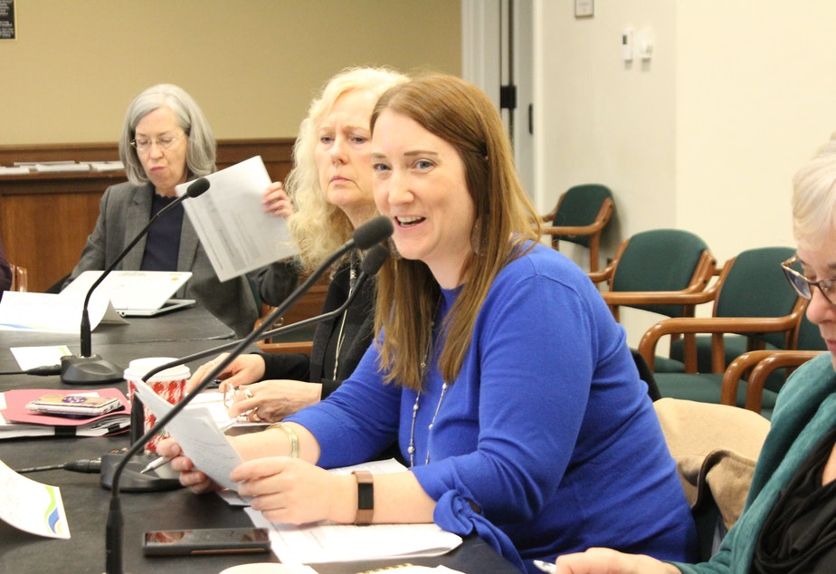 State Rep. Noel Frame, D-Seattle, co-chairing a meeting of the Children's Mental Health Work Group. Frame brokered compromise legislation aimed at helping parents better respond to their teens behavioral health crises.