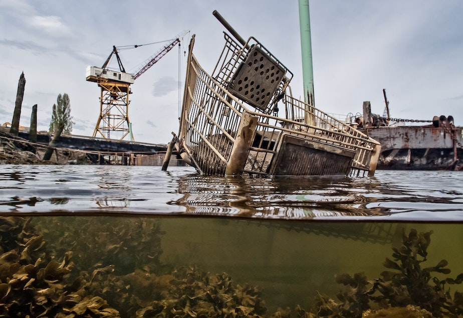 A shopping cart and the industrial backdrop of the Duwamish river