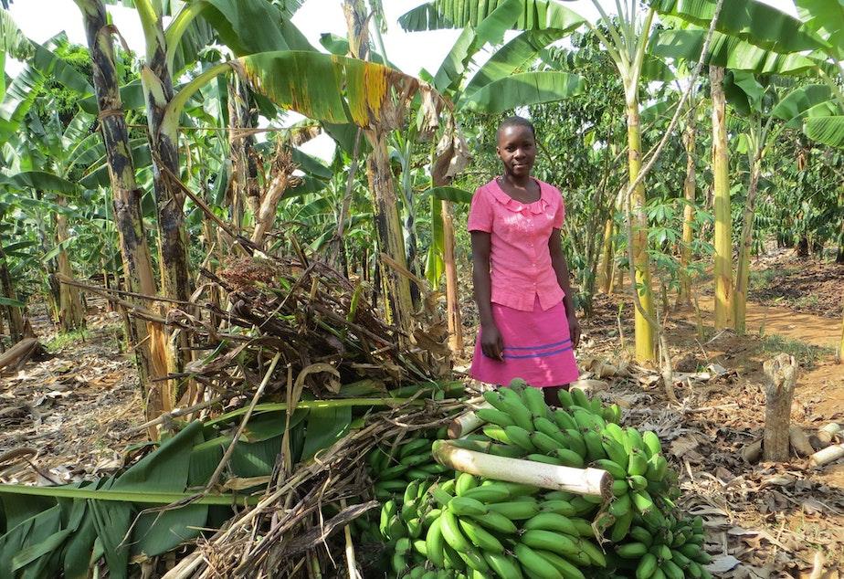 Lovincer from Uganda works managing her fresh banana business to support her family.