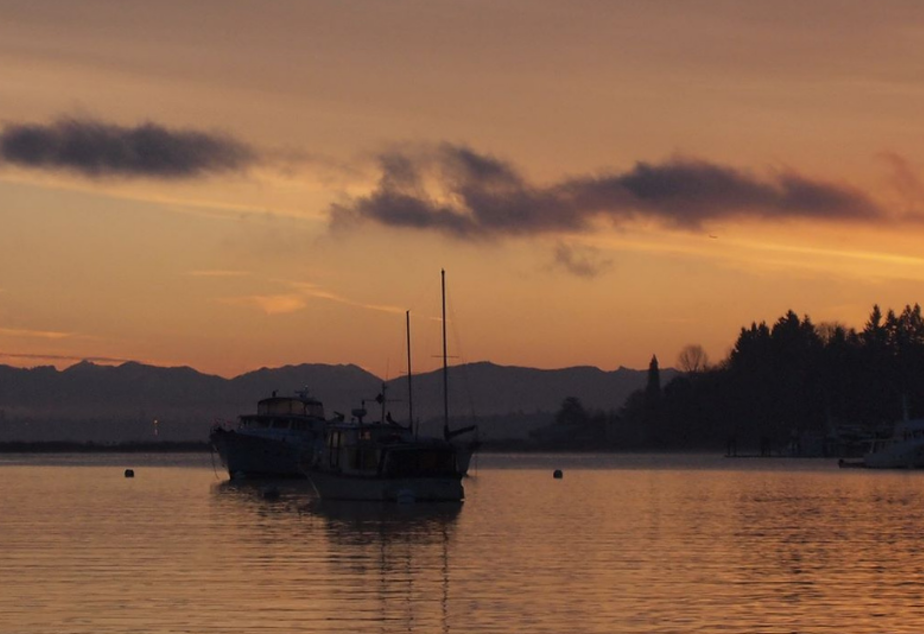caption: Boats anchored in a Puget Sound harbor.