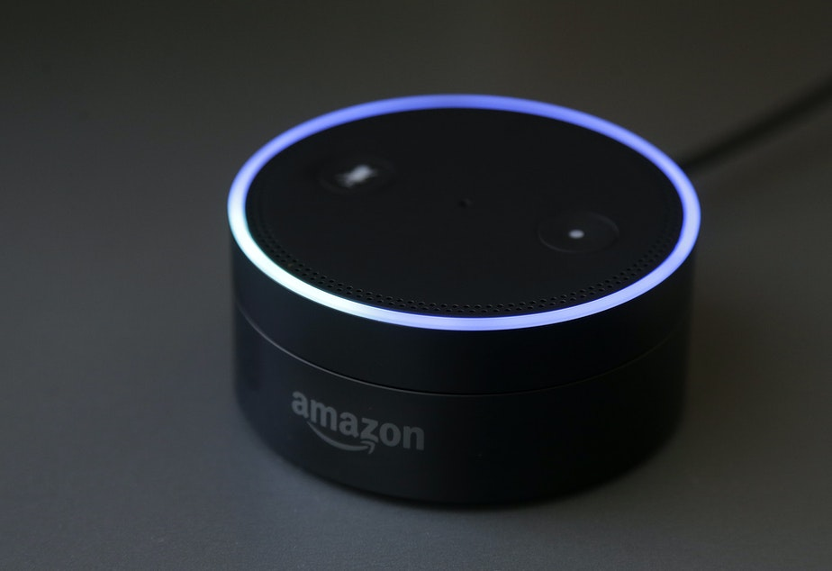 Gizmodo's Kashmir Hill tried to disconnect from all Amazon products, including smart speakers, as part of a bigger experiment in living without the major tech players.