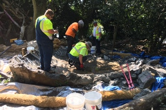 Crews demolish a concrete skate bowl on 'Duck Island' in the middle of Green Lake.