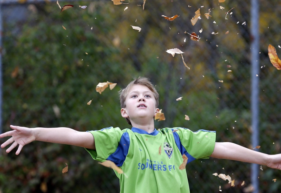 caption: File photo: Third grader Charlie Jenson watches leaves fall after tossing a bunch into the air while on recess at West Woodland Elementary Thursday, Oct. 17, 2013, in Seattle.
