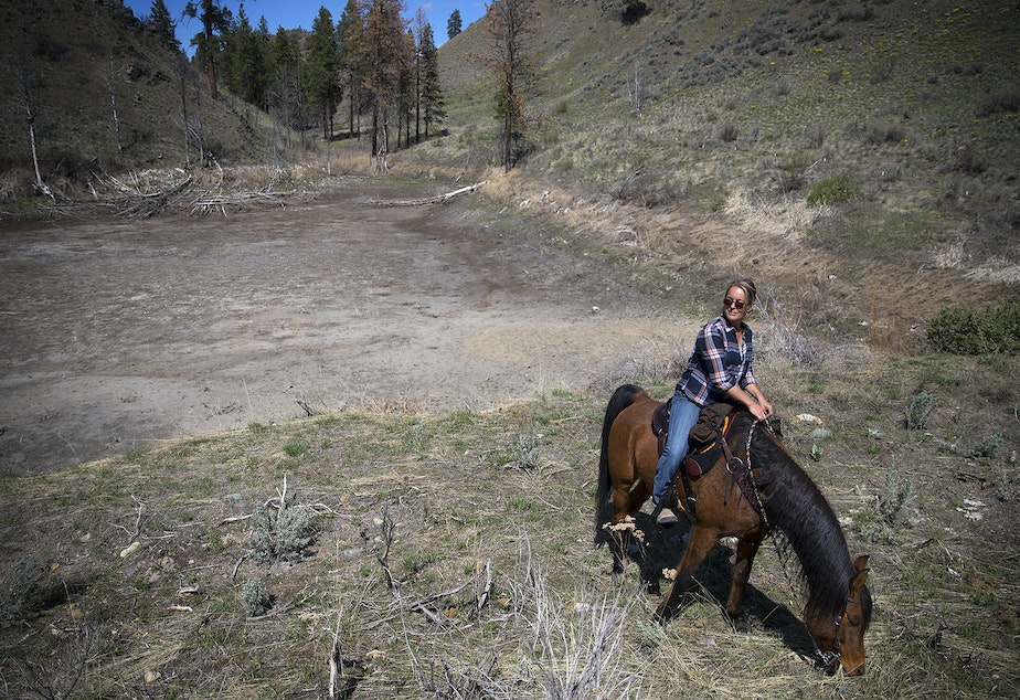 caption: Christina Cline rides her horse, the Big Bad Wolf, next to a dry pond that is typically filled with water, on Tuesday, April 23, 2019, near Carlton, Washington.