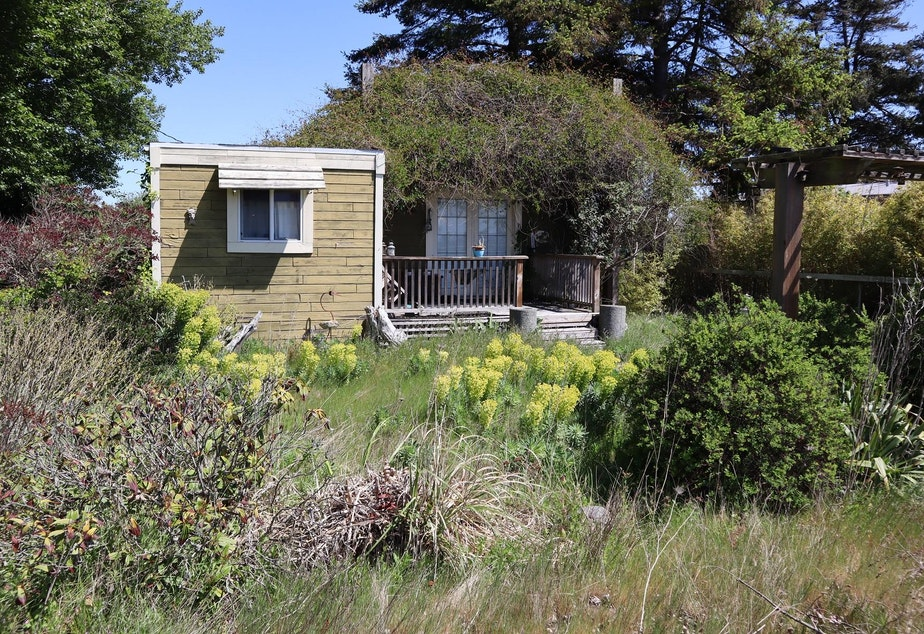 caption: Second homes in Point Roberts owned by Canadians can be easily recognized by their overgrown yards. The extended border closure keeps the owners away.