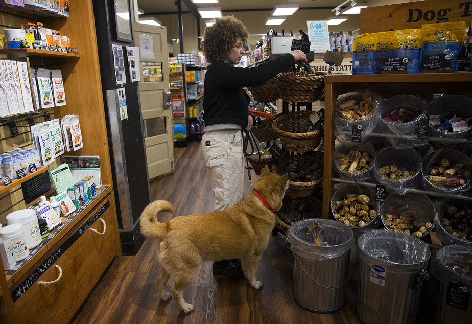 caption: Biggest Carbon Loser contestant Meredith Cooper buys a treat for her 8-year-old husky mix, Sun Ra, at Mud Bay in Seattle.