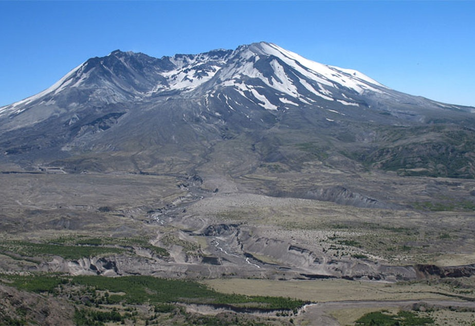 caption: Mount St. Helens left an indellible mark on the Northwest landscape -- not just in the ecology and geology, but in how government officials respond and think about disaster preparedness.