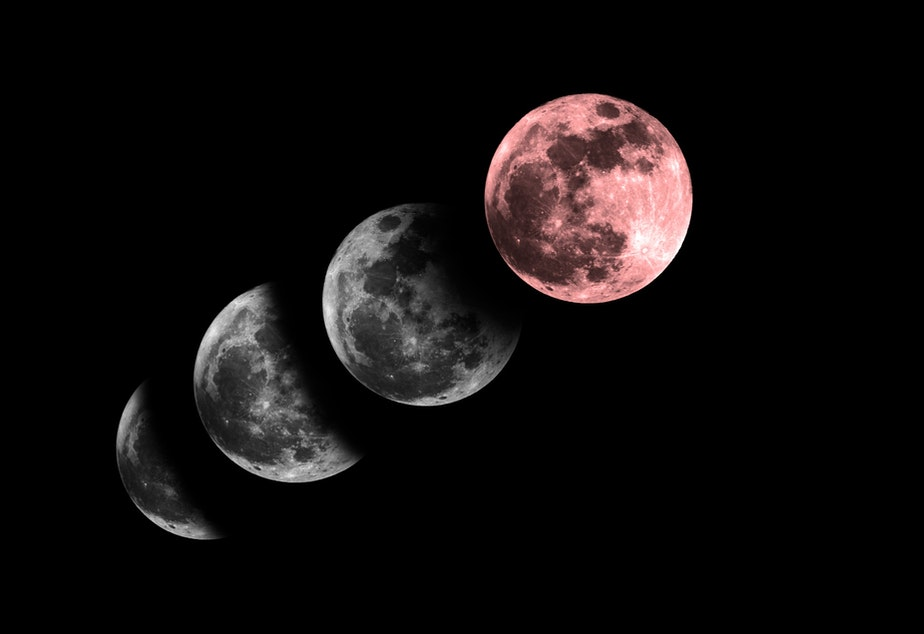 Phases of the moon during a lunar eclipse (in Sagittarius, in case you were wondering).