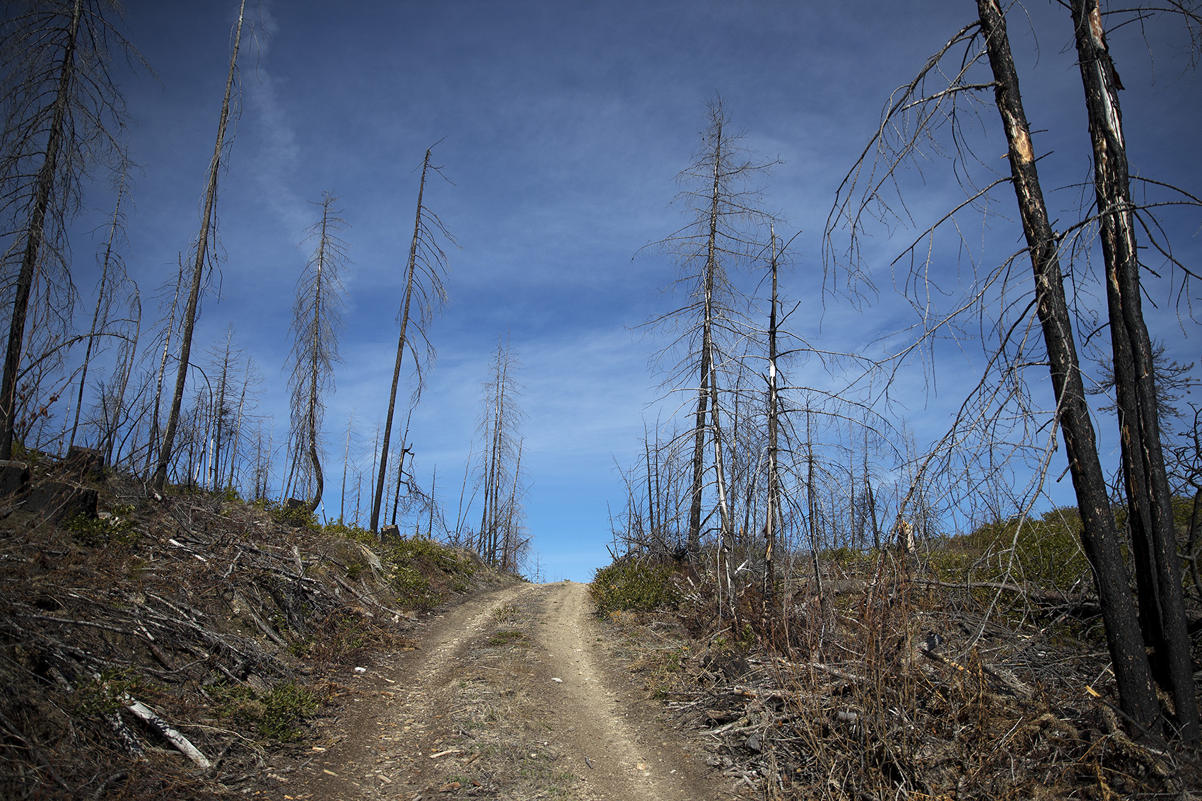 KUOW - Snow melts, anxiety rises: Wildfire season is here