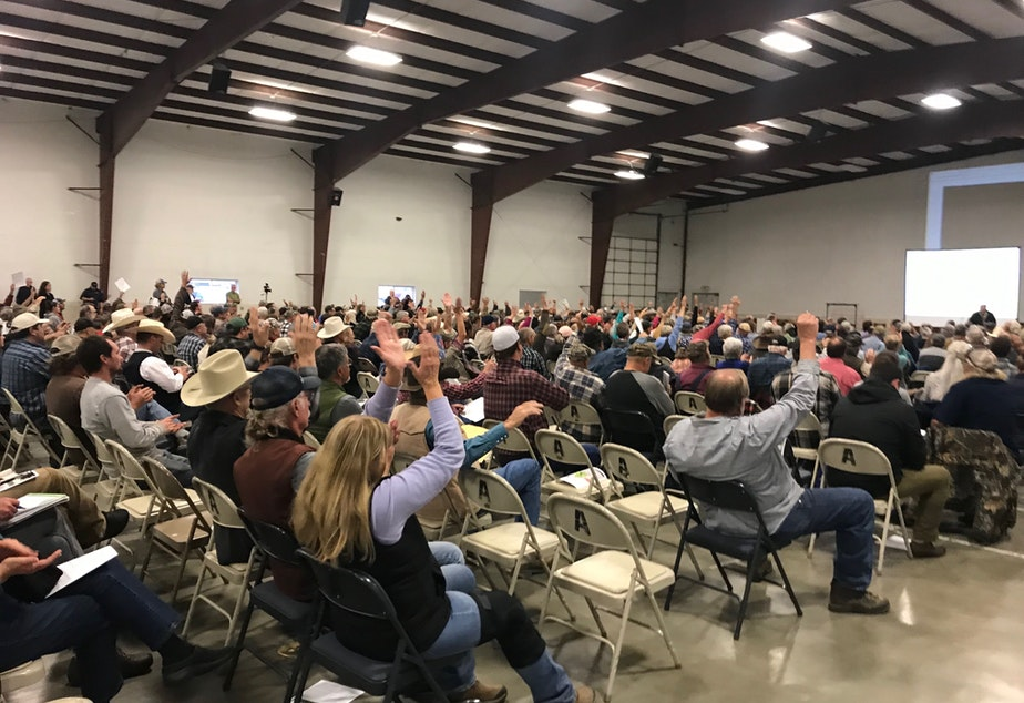 caption: U.S. Rep. Dan Newhouse speaks to a crowd at the Okanogan County Fairgrounds about possible grizzly bear reintroduction in the North Cascades. Most voiced opposition to the idea, including Newhouse.
