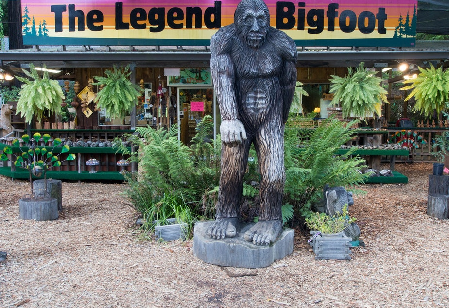 """The Legend of Bigfoot"" is a store along Highway 101 in northern California."