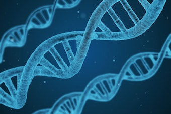 DNA molecules and the secrets they carry.