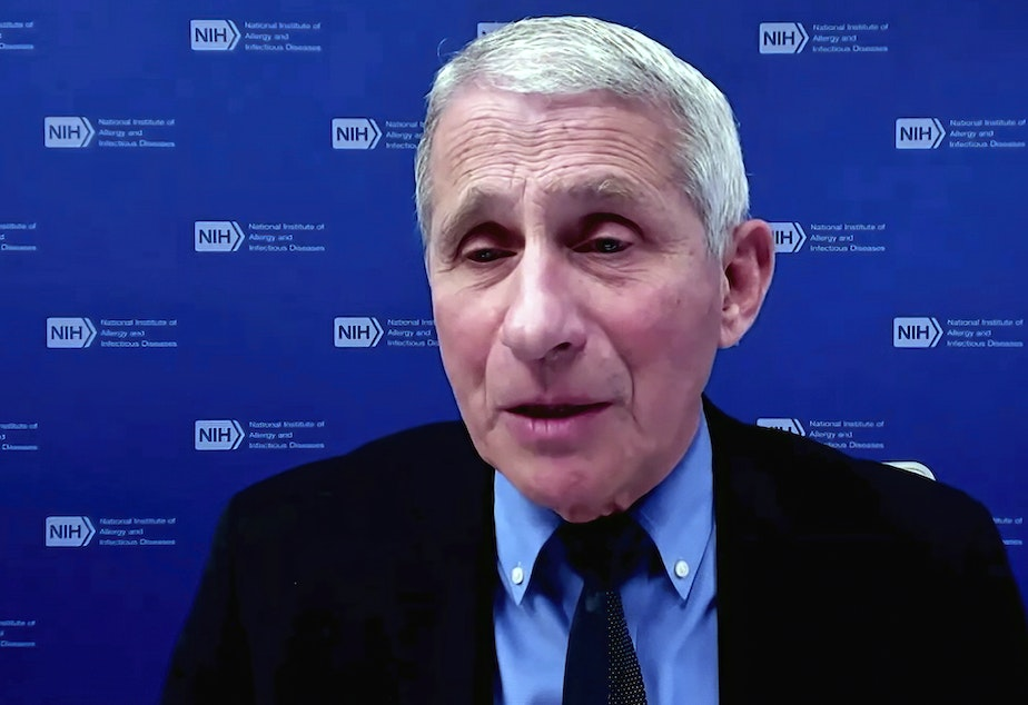 caption: Dr. Anthony Fauci, director of the National Institute of Allergy and Infectious Diseases and chief medical adviser to the president, speaks earlier this week during a White House briefing on the COVID-19 pandemic.