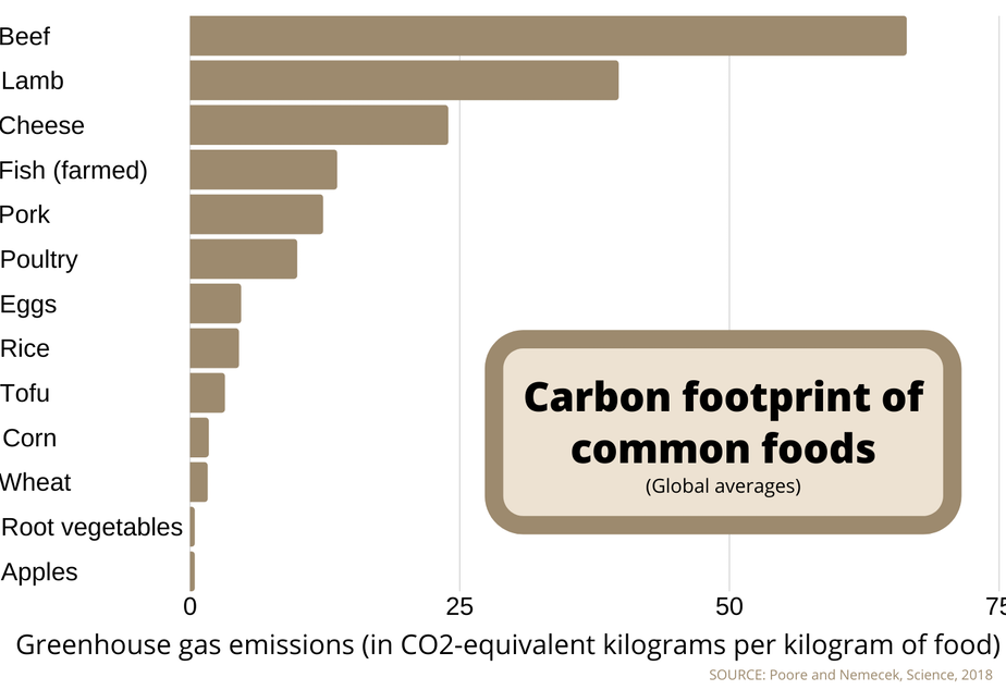 caption: The climate impacts of eating beef, lamb and cheese dwarf those of other foods.