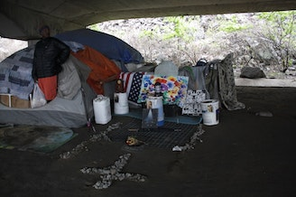 """William Kowang lives in the area under I-5 known as """"the Jungle."""""""