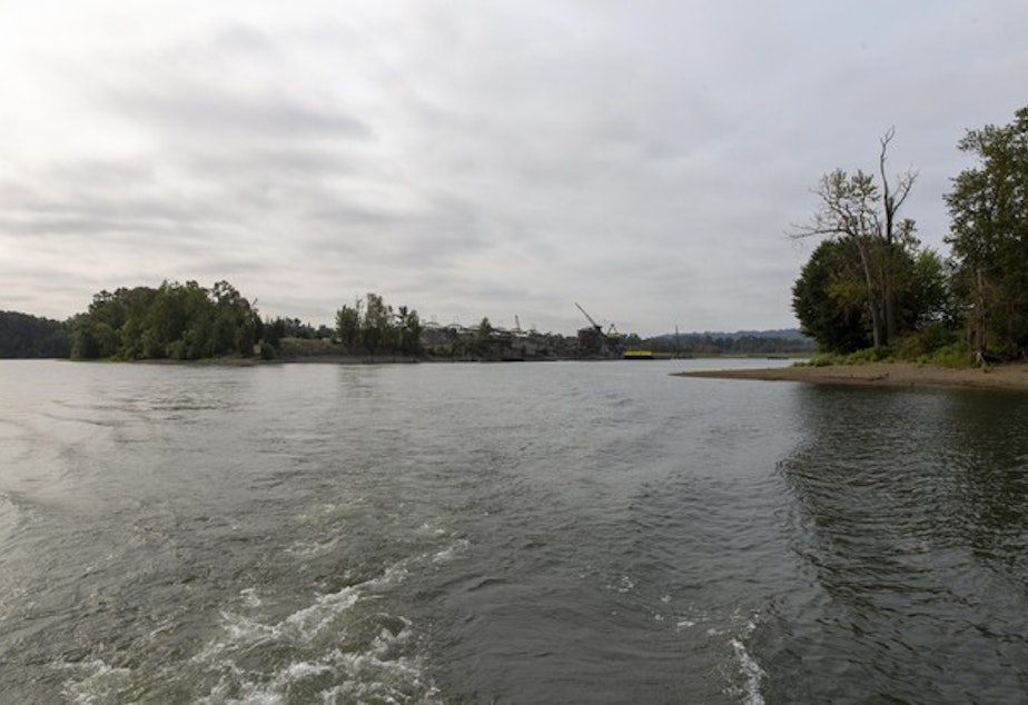 <p>The Ross Island Lagoon is the site of a recent blue-green algae bloom contaminating the Willamette river.&nbsp;</p>