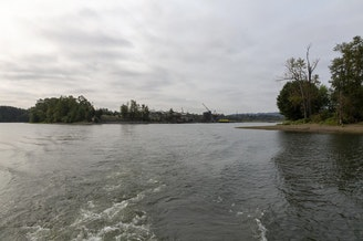 <p>The Ross Island Lagoon is the site of a recent blue-green algae bloom contaminating the Willamette river.</p>