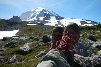 To hike to Spray Park in Mount Rainier National Park, you would need a America the Beautiful Pass, or pay for a day pass, but not use your Discover Pass or Northwest Forest Pass. Got it?