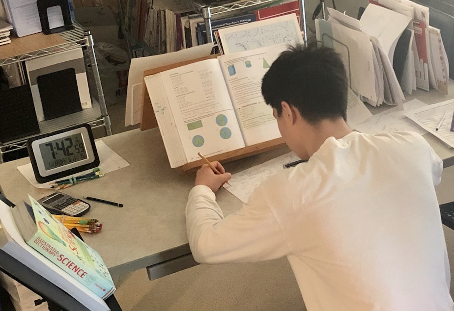 caption: Every day, Lisa sits down with Anthony to teach him math. Homeschooling allows Lisa to spend extra time on especially confusing topics. Here's Anthony with his algebra homework.