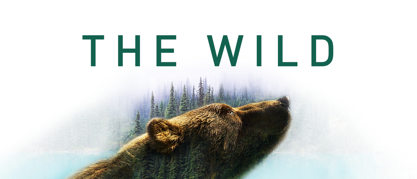 Thewild Fbcover2