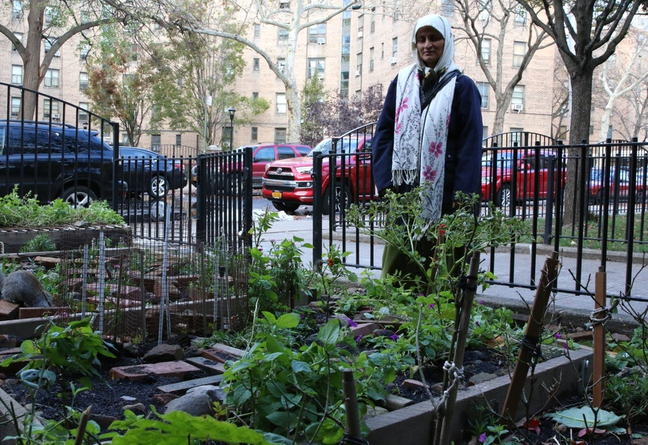 caption: Queensbridge Nayrin Muhith stands in front of her family's flower garden