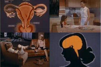 "Stills from ""Parent to Child: About Sex,"" a 1966 film"