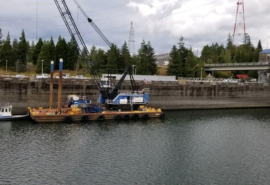 This Sept. 8, 2019 photo provided by the U.S. Army Corps of Engineers shows a boat lock on the Bonneville Dam on the Columbia River that connects Oregon and Washington at Cascade Locks., Ore.