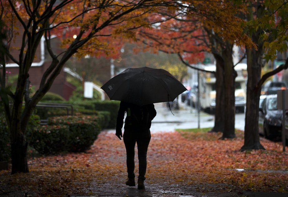 A pedestrian walks in the rain on Tuesday, November 21, 2017, near the intersection of 22nd Ave. and 58th St., in Seattle.