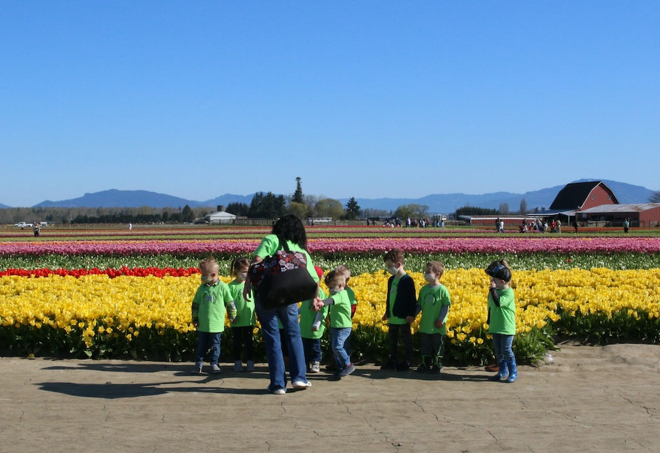 caption: Visitors to TulipTown during the Skagit Valley Tulip Festival in April, 2021