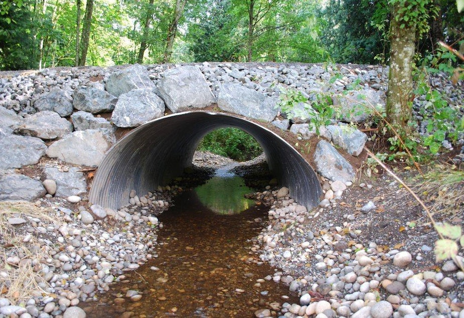 A fish-friendly culvert in Washington state