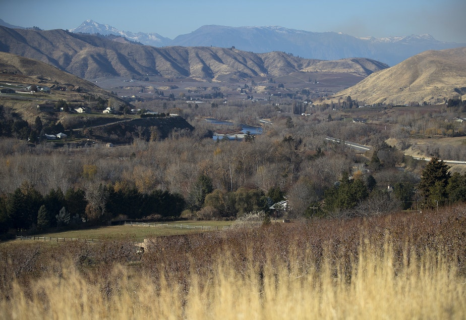Orchards are shown in the foreground of the Wenatchee Valley on Monday, November 19, 2018, in Wenatchee. KUOW Photo/Megan Farmer