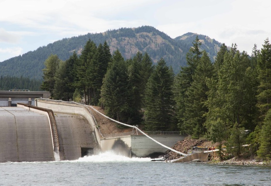 caption: A Whooshh Innovations fish passage system moves fish around Cle Elum dam.